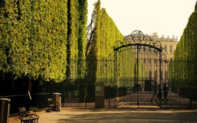 Is Wrought Iron an Ideal Material for Gates?